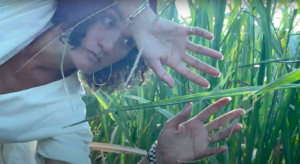 Paloma McGregor in a field of sugarcane